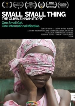 Small Small Thing: The Olivia Zinnah Story - Fighting for Justice for a Young Rape Victim in Africa