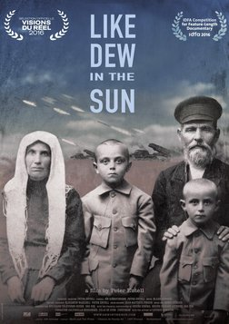 Like Dew in the Sun - Ukraine's Civil War
